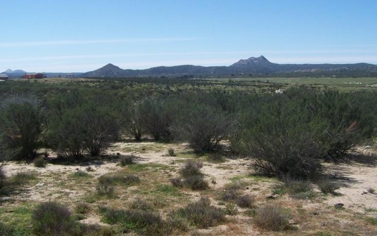 Foto de terreno comercial en venta en  , paseo del águila rancho eseorial, tecate, baja california, 1213623 No. 06
