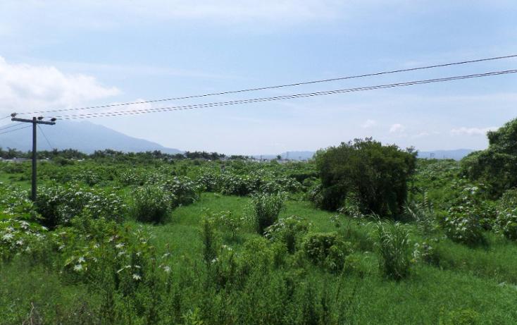 Foto de terreno habitacional en venta en  , paseo del valle real, tepic, nayarit, 1877282 No. 06