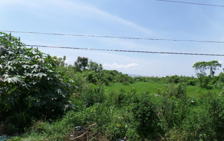 Foto de terreno habitacional en venta en  , paseo del valle real, tepic, nayarit, 1877282 No. 08