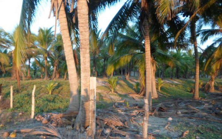 Foto de terreno habitacional en venta en paseo playa larga 21, aeropuerto, zihuatanejo de azueta, guerrero, 1710694 no 13