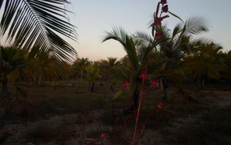 Foto de terreno habitacional en venta en paseo playa larga 21, aeropuerto, zihuatanejo de azueta, guerrero, 1710694 no 14