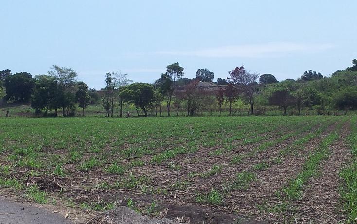 Foto de terreno comercial en venta en  , paso de ovejas centro, paso de ovejas, veracruz de ignacio de la llave, 1131677 No. 02