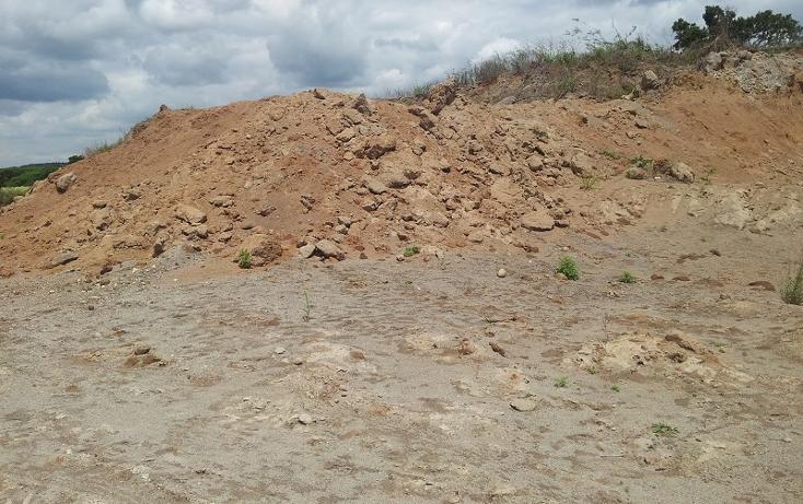 Foto de terreno comercial en venta en  , paso de ovejas centro, paso de ovejas, veracruz de ignacio de la llave, 1131677 No. 04