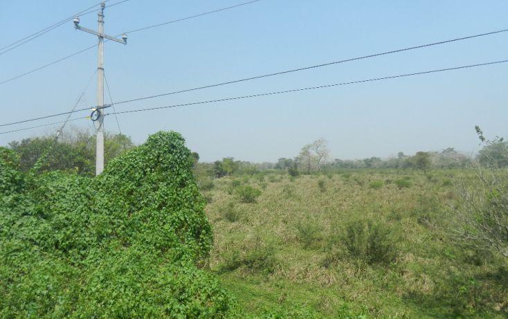 Foto de terreno comercial en venta en, paso de san juan, jilotepec, veracruz, 1720508 no 03