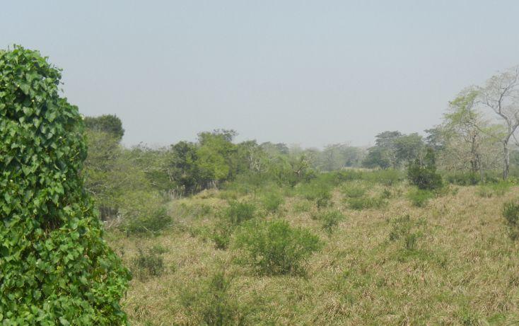Foto de terreno comercial en venta en, paso de san juan, jilotepec, veracruz, 1720508 no 04