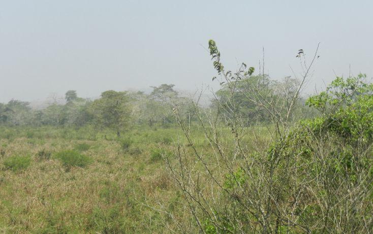 Foto de terreno comercial en venta en, paso de san juan, jilotepec, veracruz, 1720508 no 05