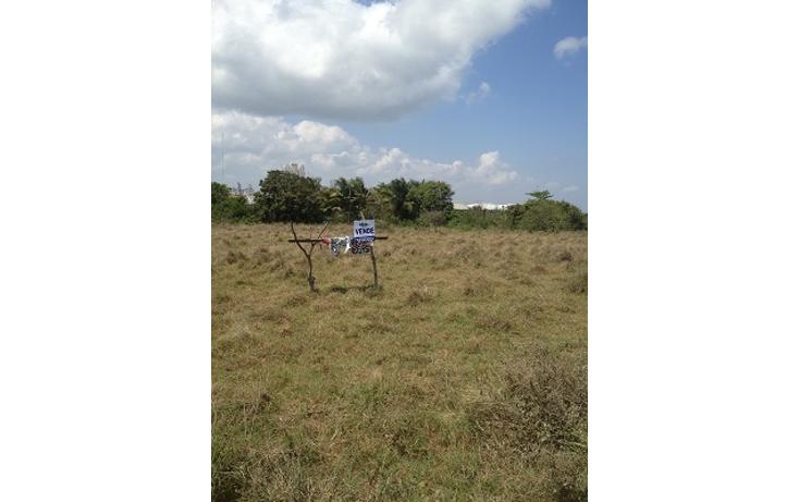 Foto de terreno comercial en venta en  , paso del toro, medellín, veracruz de ignacio de la llave, 1073177 No. 03