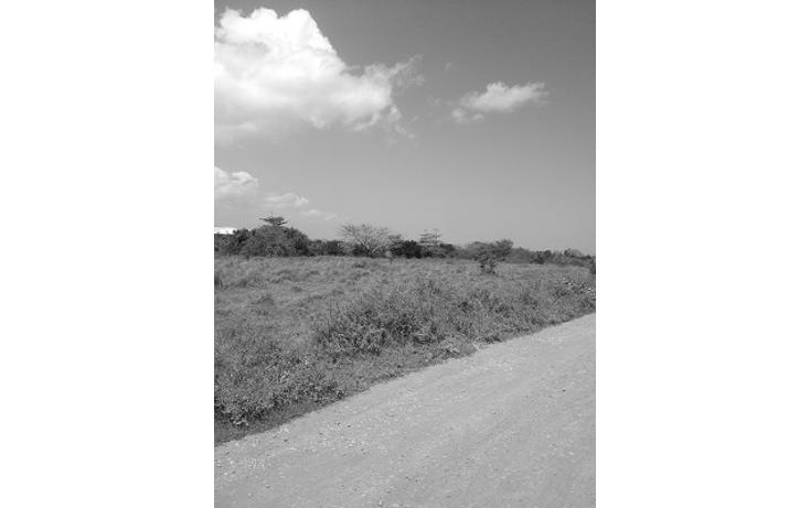Foto de terreno comercial en venta en  , paso del toro, medellín, veracruz de ignacio de la llave, 1073177 No. 05