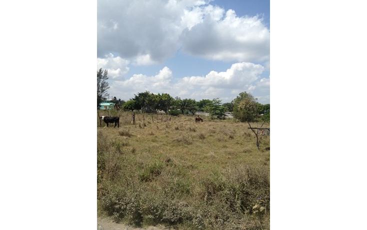 Foto de terreno comercial en venta en  , paso del toro, medellín, veracruz de ignacio de la llave, 1073177 No. 06