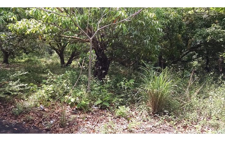 Foto de terreno comercial en venta en  , paso del toro, medell?n, veracruz de ignacio de la llave, 1088583 No. 04