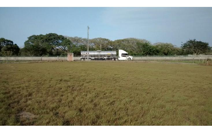 Foto de rancho en venta en  , paso del toro, medell?n, veracruz de ignacio de la llave, 1183075 No. 05