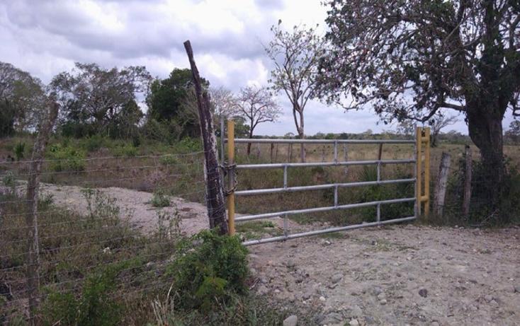 Foto de terreno comercial en venta en  , paso del toro, medellín, veracruz de ignacio de la llave, 1277191 No. 02