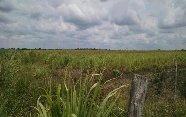 Foto de terreno comercial en venta en  , paso del toro, medellín, veracruz de ignacio de la llave, 1277191 No. 03