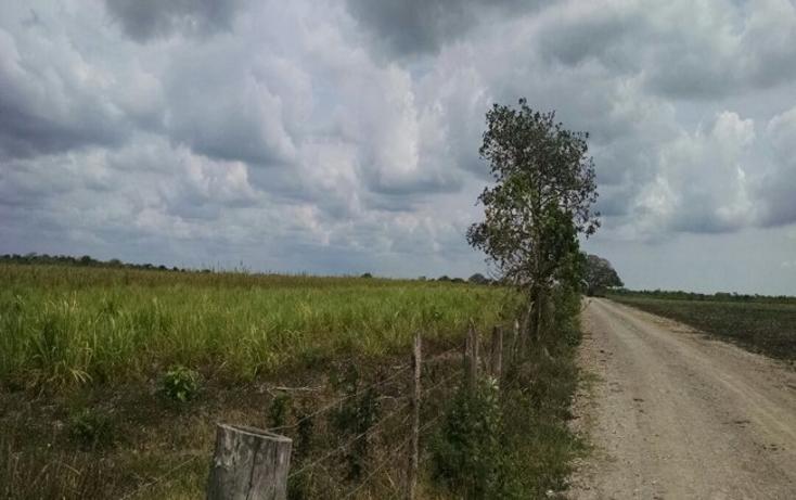 Foto de terreno comercial en venta en  , paso del toro, medellín, veracruz de ignacio de la llave, 1277191 No. 07