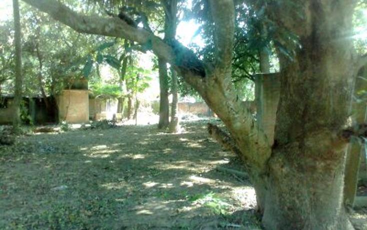 Foto de terreno habitacional en venta en  , paso del toro, medell?n, veracruz de ignacio de la llave, 1430455 No. 01