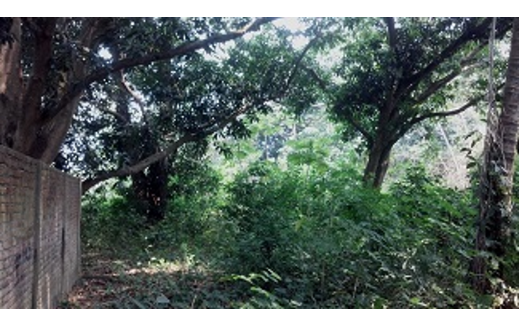 Foto de terreno habitacional en venta en  , paso del toro, medell?n, veracruz de ignacio de la llave, 1430455 No. 05