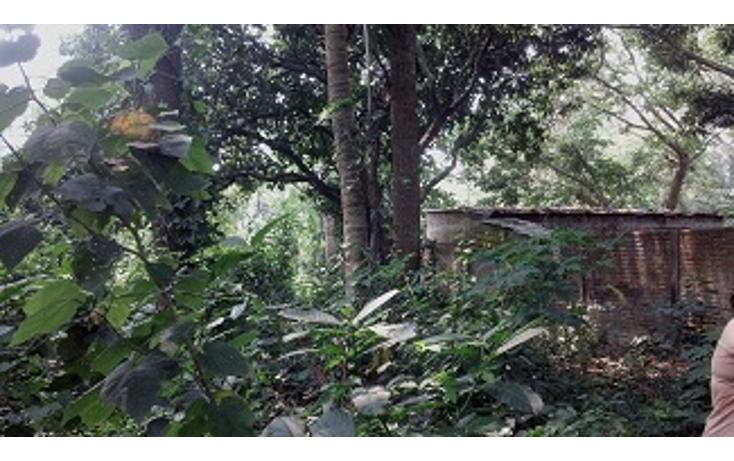 Foto de terreno habitacional en venta en  , paso del toro, medell?n, veracruz de ignacio de la llave, 1430455 No. 07