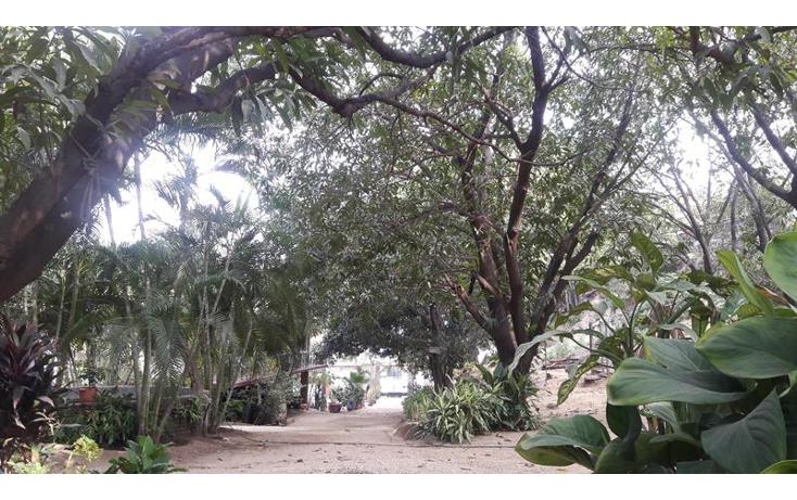 Foto de local en venta en  , paso limonero, acapulco de juárez, guerrero, 1394821 No. 08