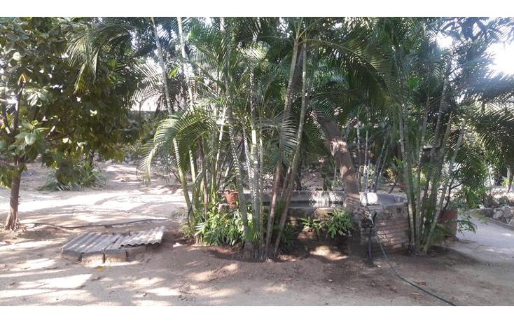 Foto de local en venta en  , paso limonero, acapulco de juárez, guerrero, 1394821 No. 12