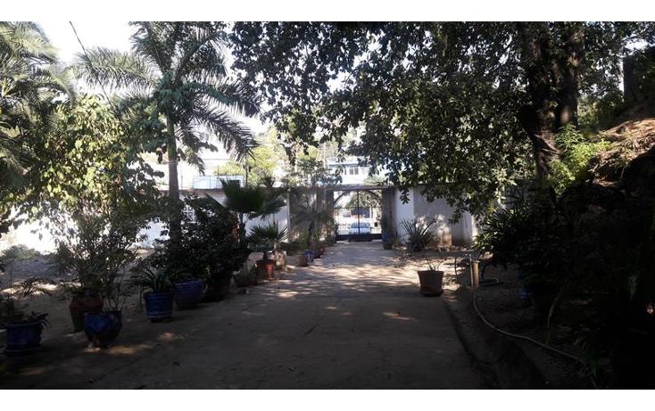 Foto de local en venta en  , paso limonero, acapulco de juárez, guerrero, 1394821 No. 21
