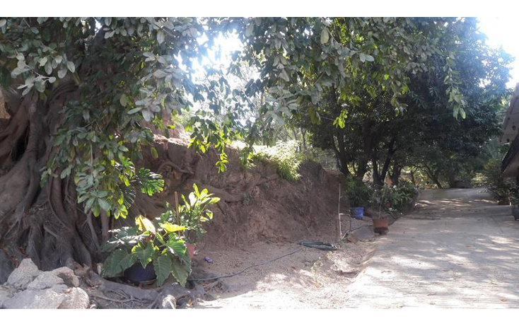 Foto de local en venta en  , paso limonero, acapulco de juárez, guerrero, 1394821 No. 29