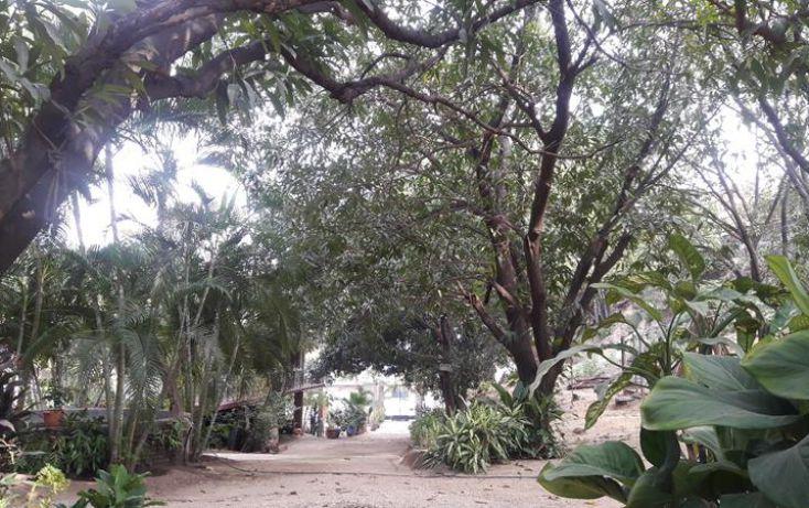 Foto de terreno comercial en venta en, paso limonero, acapulco de juárez, guerrero, 1597724 no 10