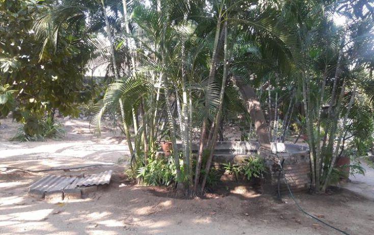 Foto de terreno comercial en venta en, paso limonero, acapulco de juárez, guerrero, 1597724 no 11