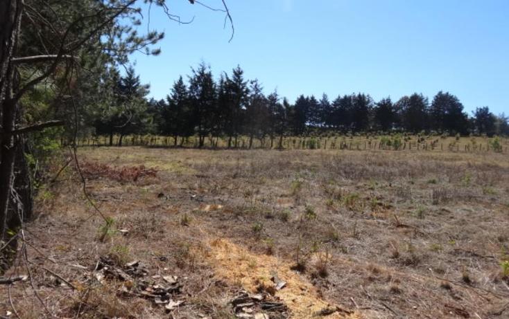 Foto de terreno industrial en venta en  , pátzcuaro, pátzcuaro, michoacán de ocampo, 1443421 No. 04