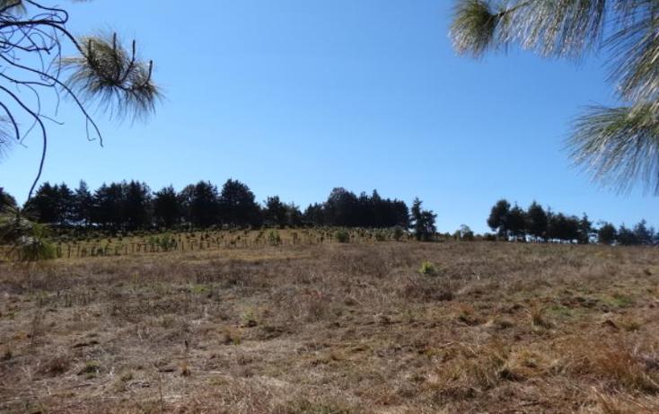 Foto de terreno industrial en venta en  , pátzcuaro, pátzcuaro, michoacán de ocampo, 1443421 No. 11