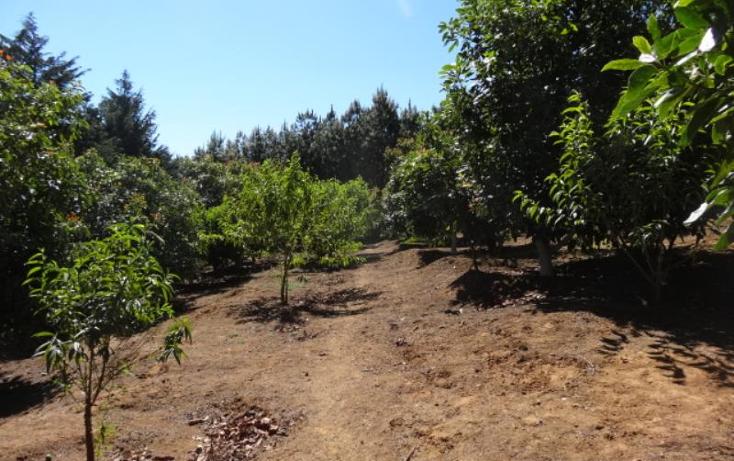 Foto de terreno industrial en venta en  , pátzcuaro, pátzcuaro, michoacán de ocampo, 1443421 No. 32