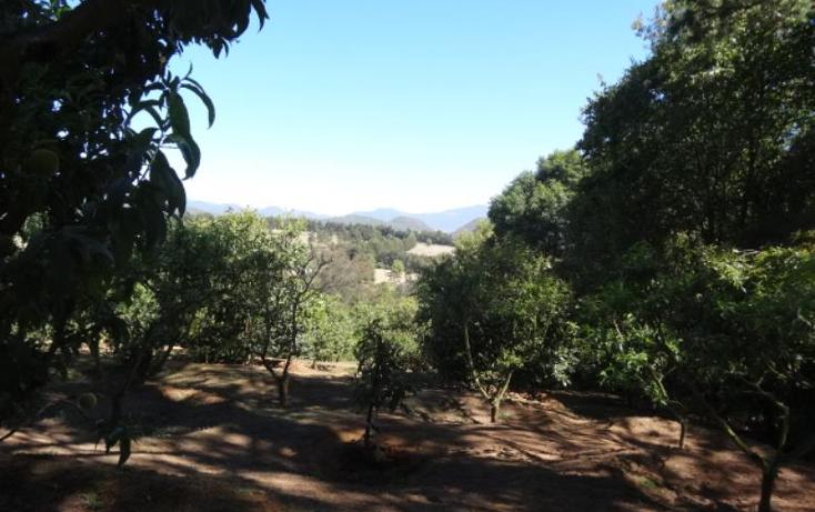 Foto de terreno industrial en venta en  , pátzcuaro, pátzcuaro, michoacán de ocampo, 1443421 No. 38