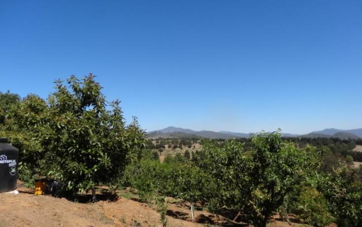 Foto de terreno industrial en venta en  , pátzcuaro, pátzcuaro, michoacán de ocampo, 1443421 No. 40