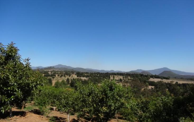 Foto de terreno industrial en venta en  , pátzcuaro, pátzcuaro, michoacán de ocampo, 1443421 No. 41