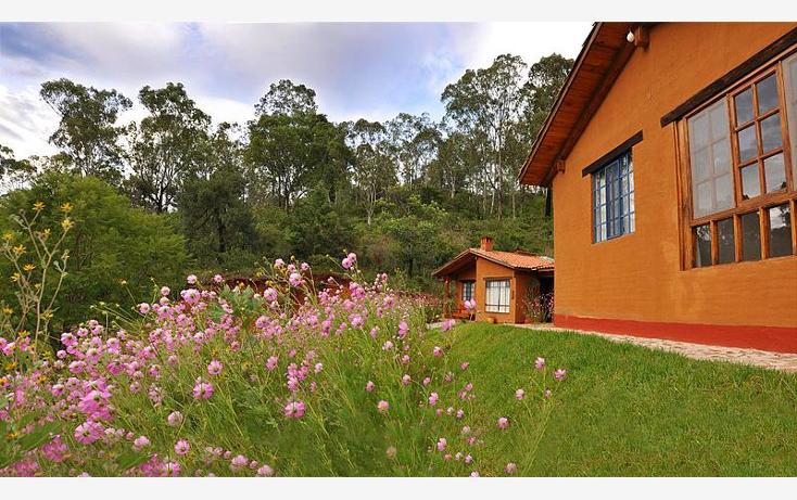 Foto de terreno comercial en venta en  , p?tzcuaro, p?tzcuaro, michoac?n de ocampo, 1455989 No. 06