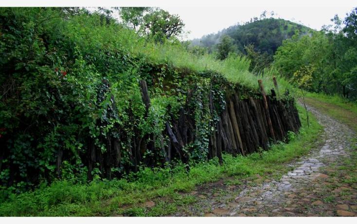 Foto de terreno comercial en venta en  , p?tzcuaro, p?tzcuaro, michoac?n de ocampo, 1455989 No. 32