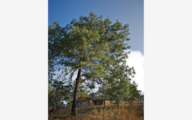 Foto de terreno comercial en venta en  , p?tzcuaro, p?tzcuaro, michoac?n de ocampo, 1455989 No. 39