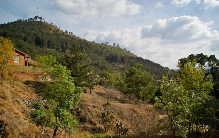 Foto de terreno comercial en venta en  , p?tzcuaro, p?tzcuaro, michoac?n de ocampo, 1455989 No. 45