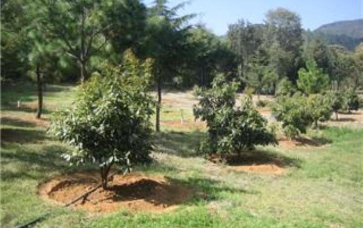 Foto de terreno habitacional en venta en  , pátzcuaro, pátzcuaro, michoacán de ocampo, 1464777 No. 09