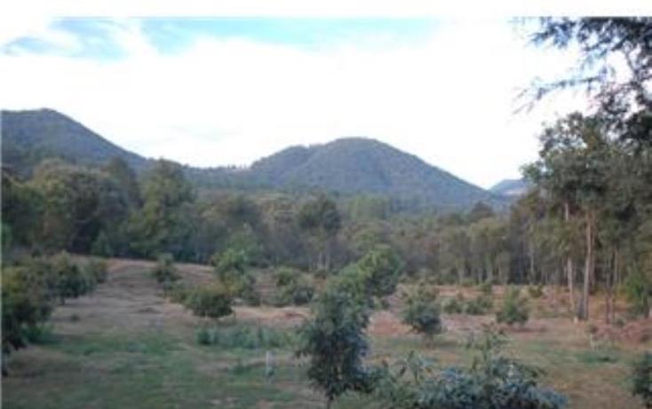 Foto de terreno habitacional en venta en  , pátzcuaro, pátzcuaro, michoacán de ocampo, 1464777 No. 12