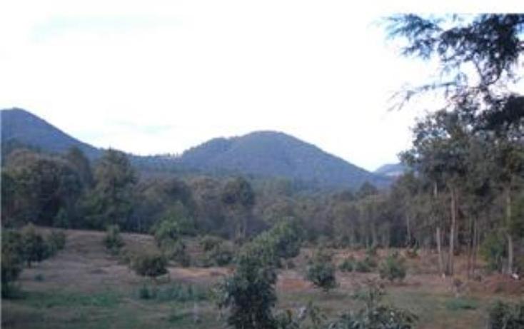 Foto de terreno habitacional en venta en  , pátzcuaro, pátzcuaro, michoacán de ocampo, 1464777 No. 14