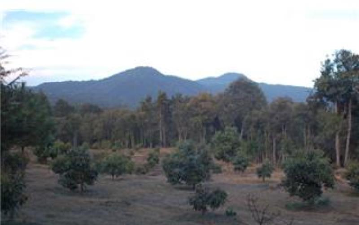 Foto de terreno habitacional en venta en  , pátzcuaro, pátzcuaro, michoacán de ocampo, 1464777 No. 16