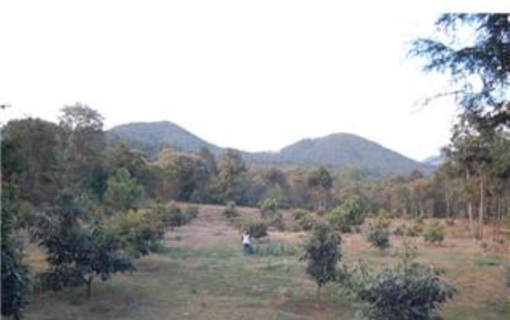 Foto de terreno habitacional en venta en  , pátzcuaro, pátzcuaro, michoacán de ocampo, 1464777 No. 17