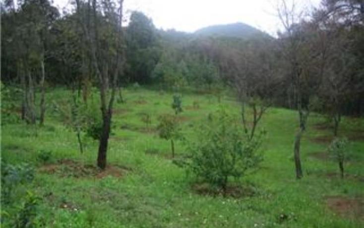 Foto de terreno habitacional en venta en  , pátzcuaro, pátzcuaro, michoacán de ocampo, 1464777 No. 20