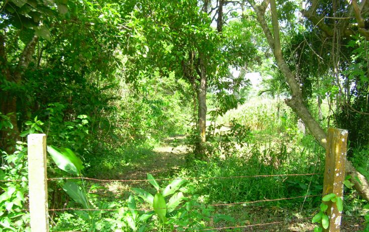 Foto de terreno comercial en venta en, pechucalco 1a secc, cunduacán, tabasco, 1088543 no 03