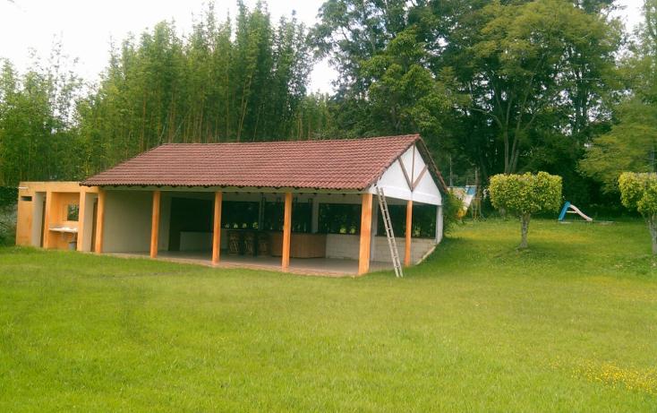 Foto de rancho en renta en  , pedregal de las animas, xalapa, veracruz de ignacio de la llave, 1196755 No. 01