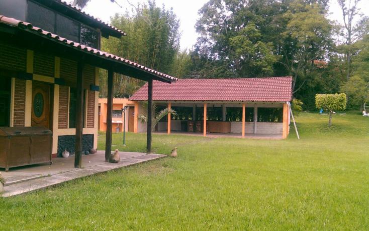 Foto de rancho en renta en  , pedregal de las animas, xalapa, veracruz de ignacio de la llave, 1196755 No. 02
