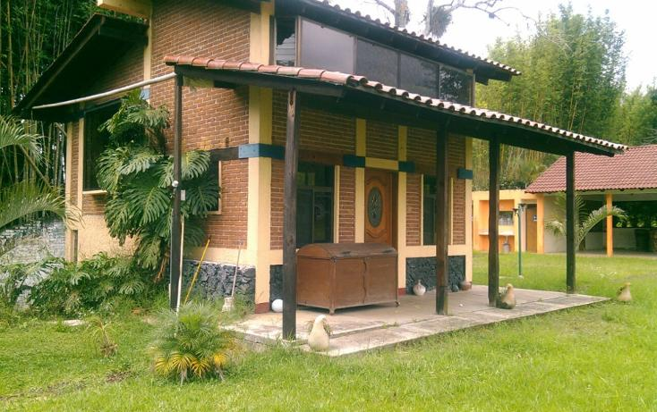 Foto de rancho en renta en  , pedregal de las animas, xalapa, veracruz de ignacio de la llave, 1196755 No. 04