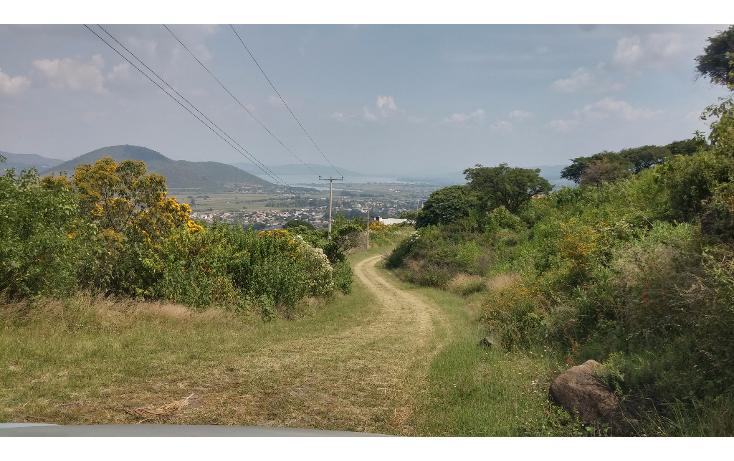 Foto de terreno habitacional en venta en  , pedregal de san miguel, tlajomulco de z??iga, jalisco, 1975594 No. 14