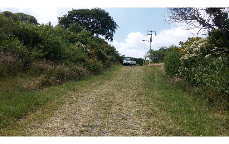 Foto de terreno habitacional en venta en  , pedregal de san miguel, tlajomulco de z??iga, jalisco, 1975594 No. 16