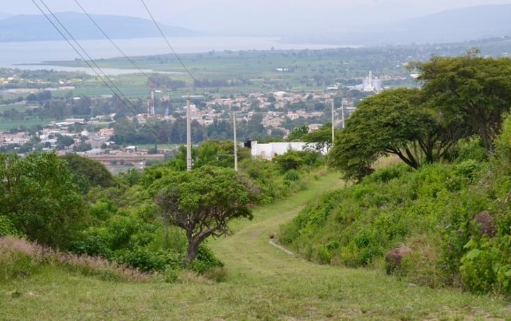 Foto de terreno habitacional en venta en  , pedregal de san miguel, tlajomulco de zúñiga, jalisco, 519084 No. 07